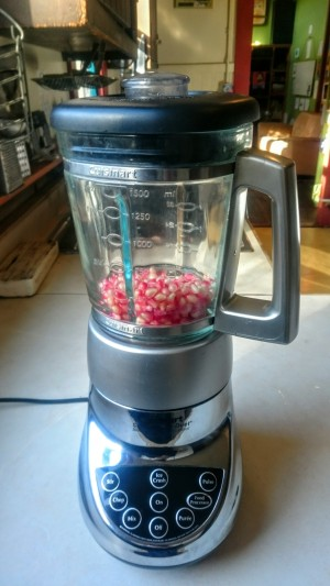 FFF Pomegranate Blender